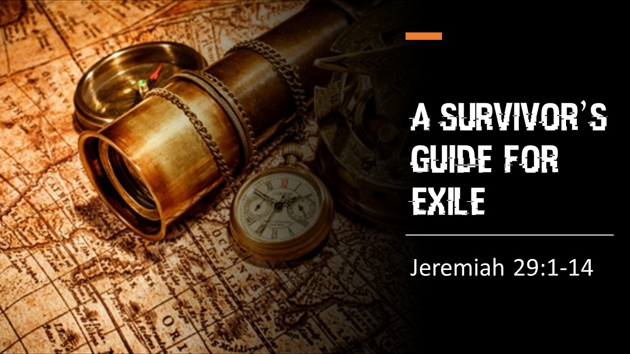 A Survivor's Guide For Exile